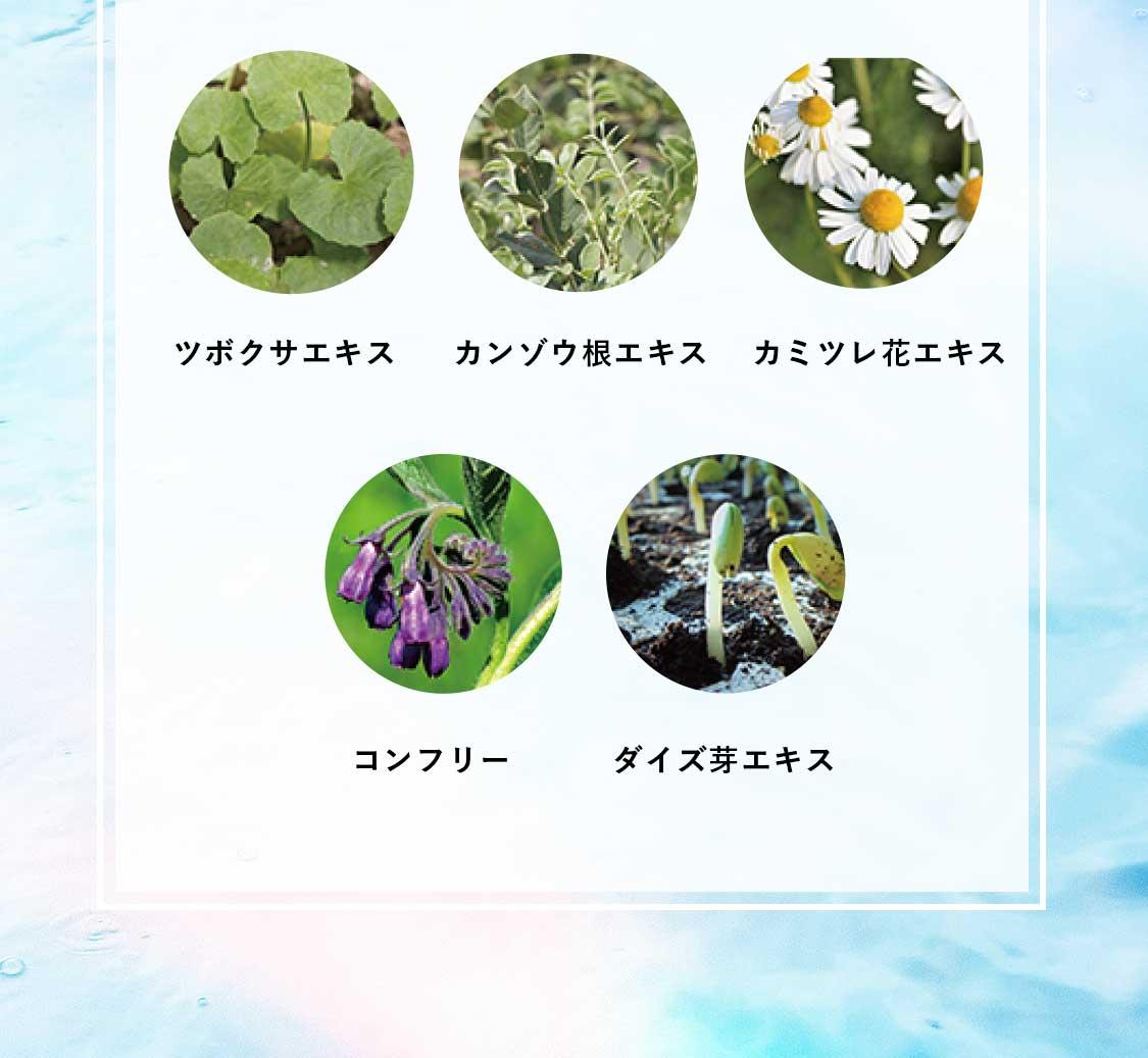 ツボクサエキスやカンゾウ根エキスなど天然の美容成分を配合